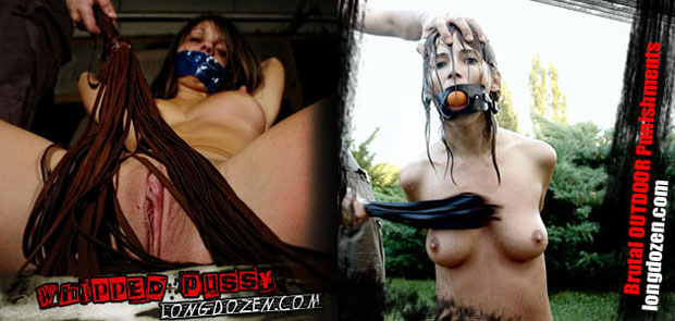Longdozen Extreme BDSM videos