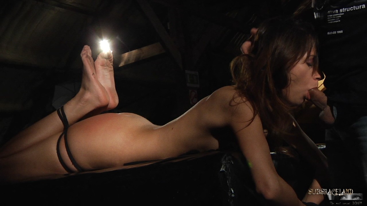 You are Free bdsm female galleries the word