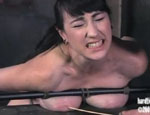 Fetching slut in BDSM. Natalie Minx...