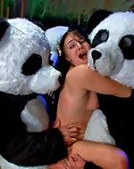 Panda Gangbang. Beautiful brunette...