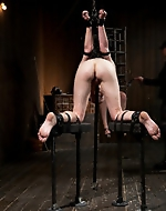 Bound strictly high. Alani Pi is...