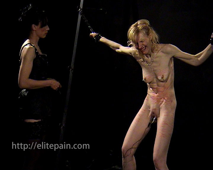 And new bdsm free galleries like