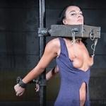 24 BDSM Tube