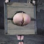 BDSM Sock