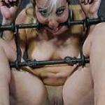 BDSM Territory