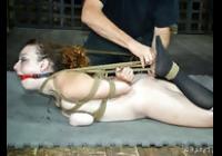 BDSM View